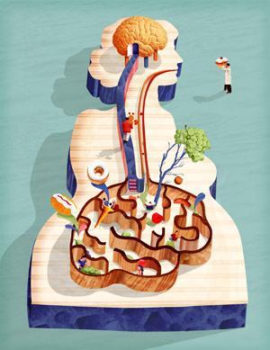 кишечник и мозг