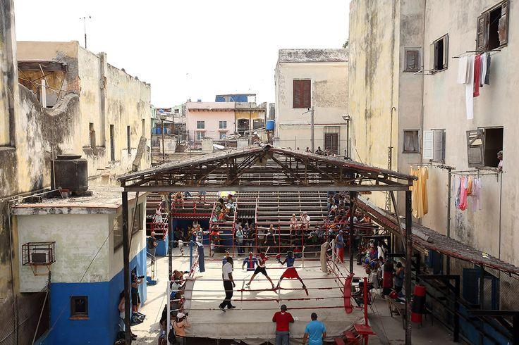 кубинская школа бокса