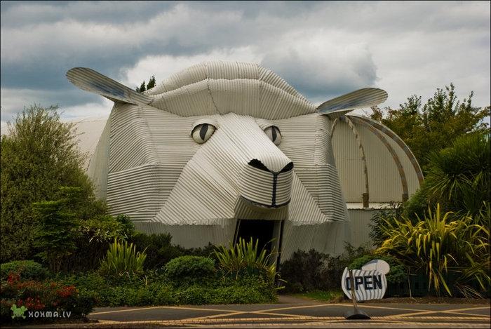 дом-овца в Новой Зеландии