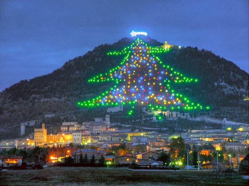 елка в Италии на холме