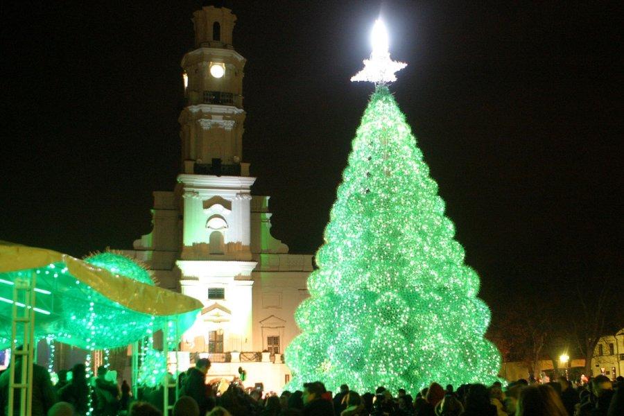 новогодняя елка в Литве