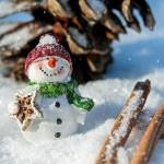 Как весело провести время в зимний период
