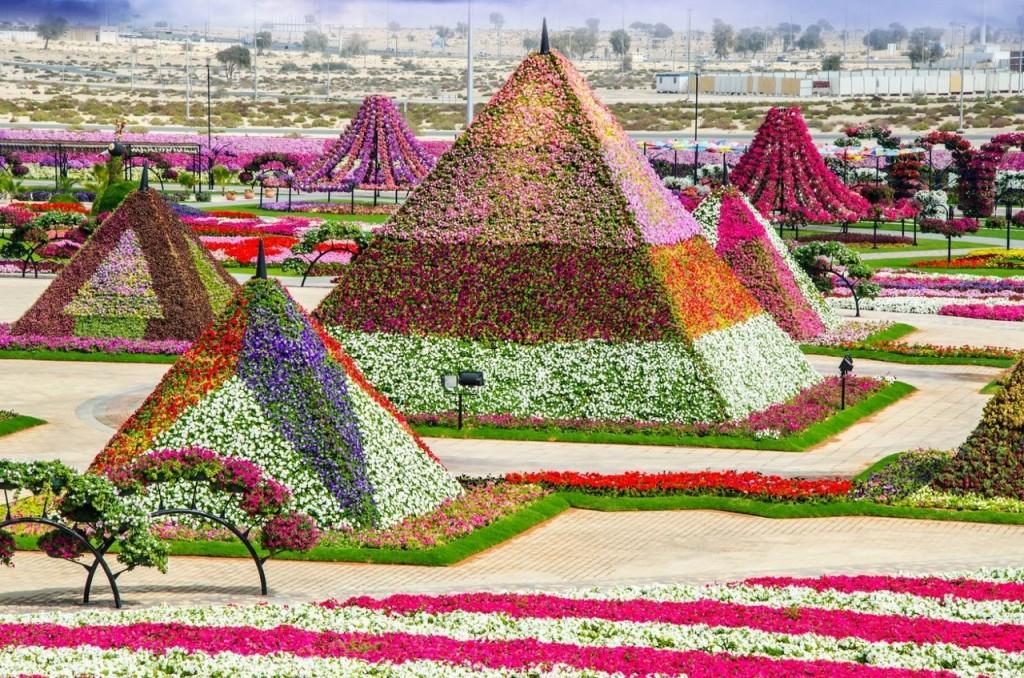 необычный парк в Эмиратах