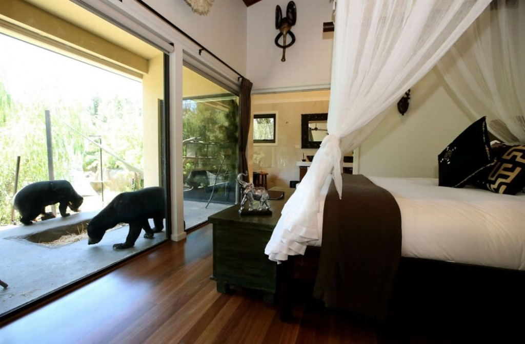 Jamala-Wildlife-Lodge-Canberra-Australia