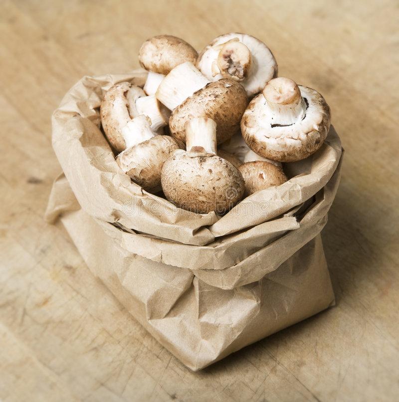 как хранить грибы
